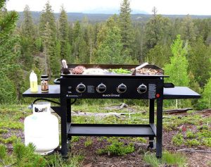 Best-Gas-Grills-Reviewed-by-Globo-Grills